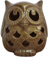 Earth Accents Owl Luminarie