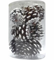 Holiday Home® Shatterproof Pinecone Ornaments - Brown/White