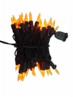 Holiday Home® Twinkle LED Mini Lights - Orange - 70 pk