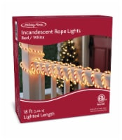 Holiday Home® Incandescent Rope Light - Red/White