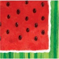 HD Designs Outdoors Watermelon Beverage Napkins