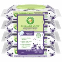Comforts™ Fragrance-Free Flushable Wipes