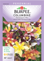 Burpee Columbine Harlequin Mixed Color Seeds - Multi-Color