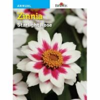 Burpee Starlight Rose Zinnia Seeds