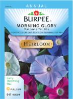 Burpee Tall Mix Heirloom Morning Glory Seeds