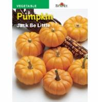 Burpee Jack Be Little Pumpkin Seeds