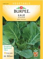 Burpee Premier Kale Seeds - 1 Count