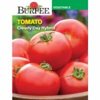 Burpee Cloudy Day Hybrid Tomato Seeds