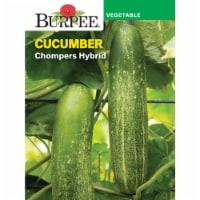 Burpee Cucumber Chompers Hybrid Seed Packet