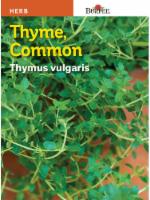 Burpee Common Thyme Seeds