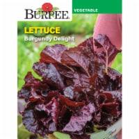 Burpee Burgundy Delight Lettuce