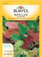 Burpee Salad Mix Mesclun Seeds