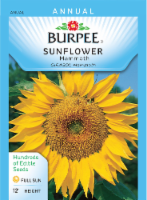 Burpee Mammoth Sunflower Seeds