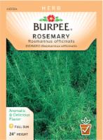 Burpee Rosemary Seeds