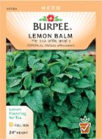 Burpee Lemon Balm Seeds - 1 Count