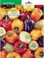 Burpee Carnival Blend Sweet Pepper Seeds - Multi-Color