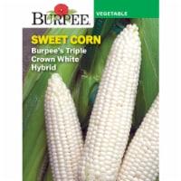Burpee Triple Crown White Hybrid Sweet Corn Seeds
