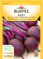Burpee Detroit Dark Red Medium Top Beet Seeds