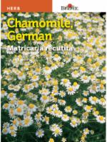 Burpee German Chamomile Seeds