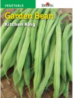 Burpee Tenderpod Bush Snap Bean Seeds - Green