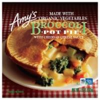 Amy's Broccoli Pot Pie