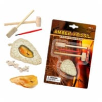 Tedco Toys 90003 Mber Fossil Dig Excavation Kit