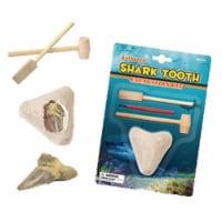 Tedco Toys 90007 Shark Teeth Dig Excavation Kit