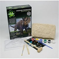 Tedco Toys 90101 Triceratops Discover Dig Kit