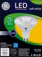 GE 12-Watt (75-Watt) Medium Base PAR30 Outdoor LED Floodlight Light Bulb - 1 ct