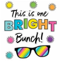 Kind Vibes This Is One Bright Bunch Bulletin Board Set - 1
