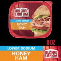 Hillshire Farm Ultra Thin Sliced Lower Sodium Honey Ham Lunch Meat