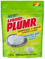 Liquid-Plumr Fresh Citrus Scented Disposal & Drain Foaming Cleaner