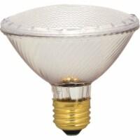 Satco 60w Par30 30k Hal Bulb S2237 - 1