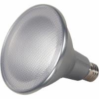 Satco  LED Light Bulb S8584
