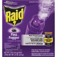 Raid 5 Oz. Flea Fogger (3-Pack) 41654 - 5 Oz.