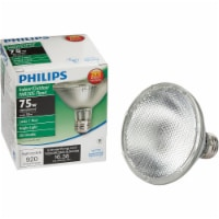 Philips 53-Watt (75-Watt) PAR30S Floodlight Bulb