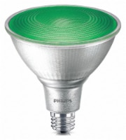 Philips 13.5-Watt PAR38 LED Party Floodlight Bulb - Green