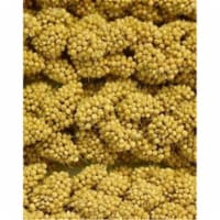 Higgins Pet Food HS60004 Sunshine Spray Millet - 12 Count