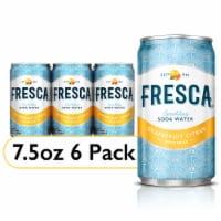 Fresca Original Citrus Sparkling Flavored Soda 6 Cans