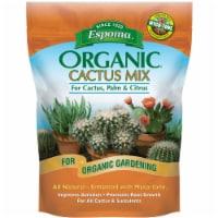 Espoma Organic 4 Qt. 2.8 Lb. Cactus & Succulent Premium Potting Mix CA4