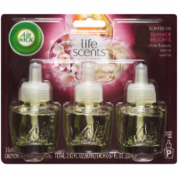 Air Wick Summer Delights Scented Oil Refills - 3 ct / 2.01 fl oz