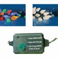 Danson Decor 80-Bulb C6 LED Color Changing Light Set X78348 - 1