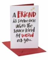 American Greetings Funny Valentine's Day Card for Friend (Same Kind of Weird) - 1 ct