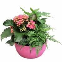 Glazed Ceramic Foliage Dish