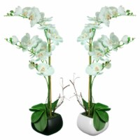 Saltoro Sherpi Square Ceramic Pot With Polyester Orchid Plant, Assortment Of Two, Multicolor