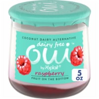 Oui by Yoplait Raspberry Dairy Free Coconut Dairy Alternative