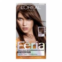 L'Oreal Paris Feria Deep Bronzed Brown 45 Multi-Faceted Shimmering Permanent Hair Color