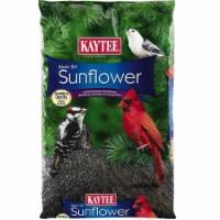 Kaytee Black Oil Sunflower Songbird Black Oil Sunflower Wild Bird Food Black Oil Sunflower - Count of: 1