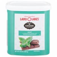 Land O' Lakes Cocoa Classics Mint & Chocolate Hot Cocoa Mix - 14.8 oz