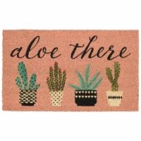 DII Aloe There Doormat - 1